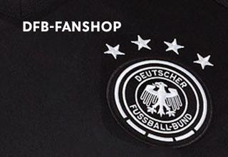 Dfb Deutscher Fußball Bund Ev