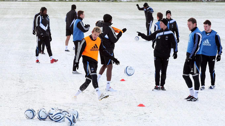 Dem Winter Trotzen Teil 4 Training Bei Gefrorenem Boden