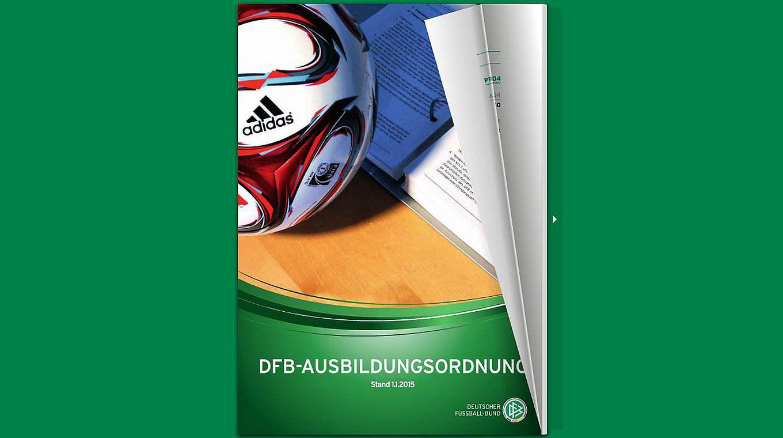 85f24a8fe5ebd Die DFB-Ausbildungsordnung jetzt als Online-Blätterfunktion :: DFB ...